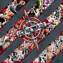 "Scene Made, Vol. 1 ""Punk & Hardcore"" ©"
